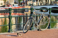 Amsterdam bicycle Royalty Free Stock Photography