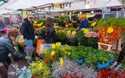 amsterdam blommamarknad Royaltyfri Fotografi