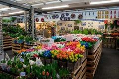 Amsterdam-Blumenmarkt (Bloemenmarkt) Stockfotografie