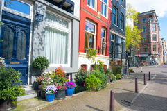 Amsterdam bostadsområde i ner staden med naturliga blommor utanför byggnaderna Nederländerna Royaltyfria Bilder