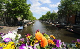 Amsterdam Canal. A canal in Amsterdam with colourful flowers in the foreground Stock Photography