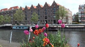 Amsterdam canal houses stock video