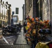 Amsterdam-Fahrrad Stockfotos