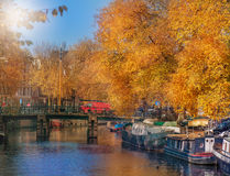 Amsterdam in fall Stock Photography