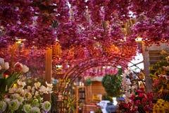 Amsterdam flower market Royalty Free Stock Photos