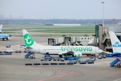 Amsterdam flygplats Schiphol Nederländerna - April 14th 2018: PH-HXI Transavia Boeing 737-800 Royaltyfria Bilder