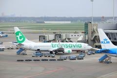 Amsterdam flygplats Schiphol Nederländerna - April 14th 2018: PH-HXI Transavia Boeing 737-800 Royaltyfri Bild