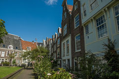 Amsterdam garden near some typical houses Royalty Free Stock Photo