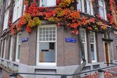 Amsterdam gata Royaltyfri Foto