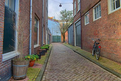 Amsterdam green street life Stock Photography