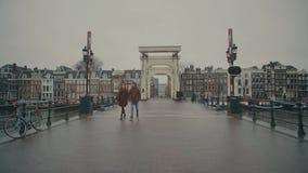 AMSTERDAM, holandie - GRUDZIEŃ 26, 2017 Pary odprowadzenie na sławnym Magere Brug lub Chuderlawy most Obrazy Royalty Free