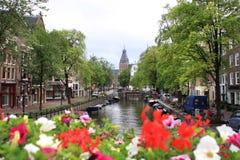 Amsterdam, holland, gata och kanal Royaltyfria Foton