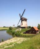 amsterdam nära windmills royaltyfria bilder