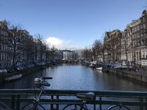 Amsterdam - natura nell'inverno Immagini Stock Libere da Diritti