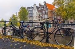 amsterdam Nederländerna Royaltyfria Bilder