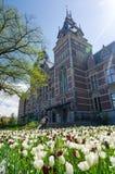 Amsterdam Nederländerna - Maj 6, 2015: Folk på trädgården runt om Rijksmuseumen Arkivfoton
