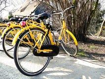 AMSTERDAM NEDERLÄNDERNA - MARS 13, 2016: Gul uthyrnings- bicyc Royaltyfria Foton