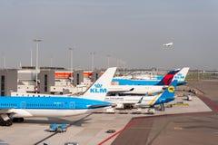 AMSTERDAM NETHERLAND - OKTOBER 18, 2017: Internationell Amsterdam flygplats Schiphol med flygplan i bakgrund Beskåda däckplac Fotografering för Bildbyråer