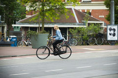 Women driving bicycles Royalty Free Stock Images