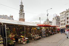 Amsterdam. NETHERLANDS - OCTOBER 20, 2013: People on Flower market on October 20, 2013. This is the only floating flower market in the world, and one of the Royalty Free Stock Photo