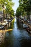 AMSTERDAM, PAESI BASSI - 6 AGOSTO 2016: Costruzioni famose del primo piano del centro urbano di Amsterdam Vista generale del paes Immagine Stock