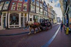 AMSTERDAM, PAESI BASSI, MARZO, 10 DEL 2018: Punto di vista all'aperto della gente non identificata che guida un trasporto con un  Fotografie Stock