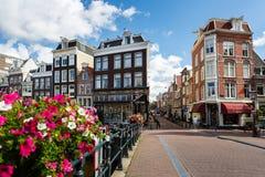 amsterdam pejzaż komunalnych Zdjęcie Stock