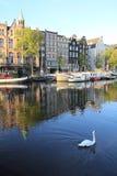 amsterdam pejzaż miejski Obraz Stock