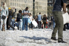 Amsterdam Pillow fight 2014 Stock Images