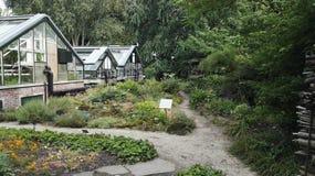 amsterdam som går naturhortusblommor Royaltyfri Fotografi