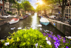 Amsterdam spirit Royalty Free Stock Images