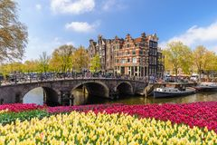 Amsterdam spring tulip flower, Netherlands. Amsterdam city skyline at canal waterfront with spring tulip flower, Amsterdam, Netherlands stock photos