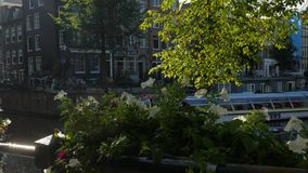 Amsterdam tour boat on Herengracht Canal stock video footage