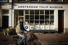 Amsterdam tulip museum Stock Photography