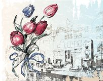 amsterdam ulicy tulipany Obraz Stock