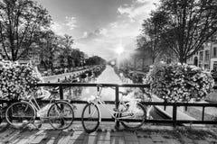 Amsterdam vårsoluppgång BW Arkivfoton