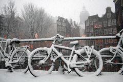 Amsterdam Winter Royalty Free Stock Photo