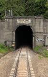 Amtrak through the Cascade Tunnel in Montana Stock Photo