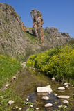 Amud stream. The Amud stream, also known as the Wadi Amud, is a stream in the Upper Galilee which spills into the Sea of Galilee Royalty Free Stock Photography