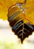 Amulett av Thailand Arkivfoton