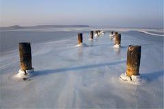 amursky залив покрыл льдед Стоковое фото RF