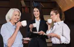 Amused colleagues drinking coffee in an office. Funny conversation. Amused female friendly colleagues drinking coffee while having break and talking in an office Stock Image