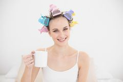 Amused natural brown haired woman in hair curlers holding a mug of coffee Royalty Free Stock Images