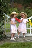 Amusement. Two girls giggle and play in a garden park.  They are playing besides a white wooden gate and are holding daisy bouquets Stock Photography