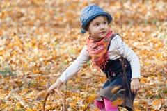 Amusement d'automne Photo libre de droits
