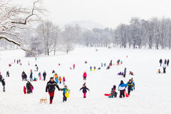 Amusement d'hiver, neige, famille sledding à l'horaire d'hiver Photographie stock