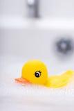 Amusement de Bathtime Photographie stock