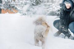 Amusement de combat de Snowball avec l'animal familier et son propriétaire dans la neige Émotion de vacances d'hiver photo stock