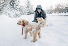 Amusement de combat de Snowball avec l'animal familier et son propriétaire dans la neige Émotion de vacances d'hiver photographie stock libre de droits