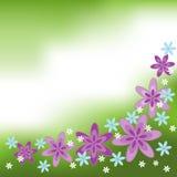 amusement de fleur de fond Photos stock